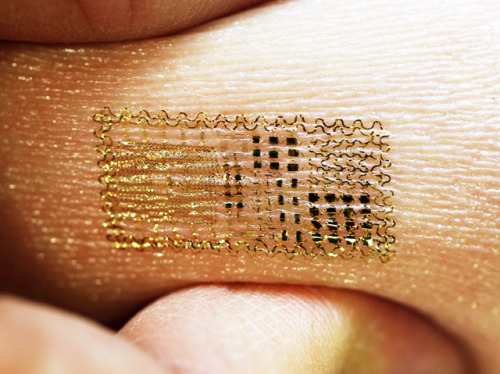 Skinny Circuits Rubbed on like a temporary tattoo these ultra-thin electronics bend and stretch with the skin. Their development paves the way for sensors that monitor heart and brain activity to take the place of bulky equipment and taped-on electrodes. Electronic components shrunk to the size of tiny bumps on the skin are connected with serpentine wires that meander like rivers, straightening rather than snapping when stretched. The whole thing is mounted on a rubbery sheet that mimics the elastic properties of skin. Known as epidermal electronics, the technology can even control computer games from voice commands. Worn on the gamer's throat, the patches detect the electrical charges associated with the muscle movements of speech. The potential applications of linking electronics and biology in this way seem boundless. Written by Mick Warwicker