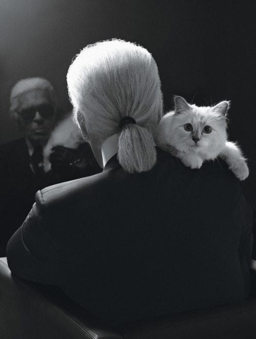 wmagazine:  Photo by Karl Lagerfeld This is all we need in life. K?Thanks.Bye.