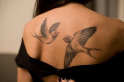 best-tattoos:  birds  Gorgeous.