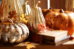 Silver adds elegance to this pumpkin display