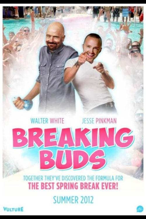 We can only hope for a sequel called Breaking Buds 2: Electric Boogaloo.  via Aaron Paul on Twitter