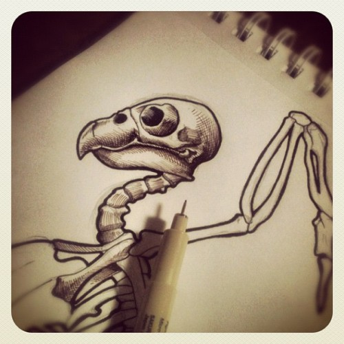 Brushing up on my bird anatomy… #drawing #penandink  #bird #birdskeleton #deadbird #birdanatomy #sketch #sketchbook (Taken with Instagram)
