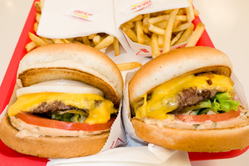 terrysdiary:  Delicious In-N-Out Burgers and Fries.