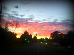 Sunrise, Mount Waverley, Victoria.
