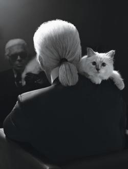 the-front-row:  Karl ­Lagerfeld and his kitten  Choupette