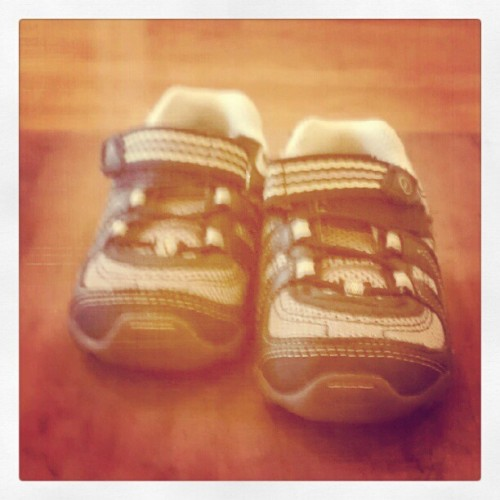 #photoadayaug Emerson's new #pair of shoes  (Taken with Instagram)