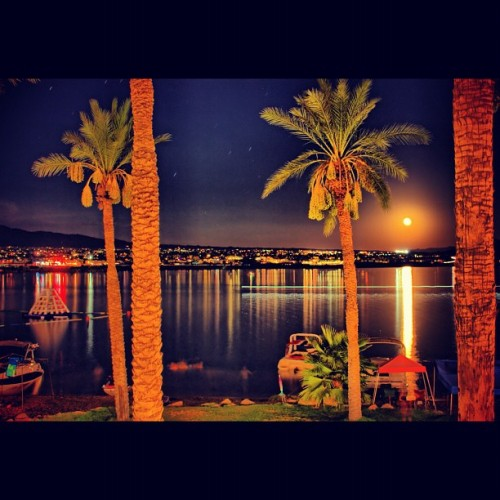Moonrise. Lake Havasu.  (Taken with Instagram)