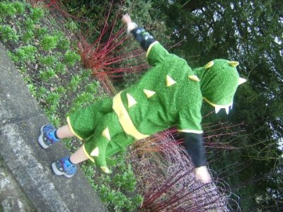 Dinosaur costume, 5 yrs old. The practicality is in the tail zipping off and on :)