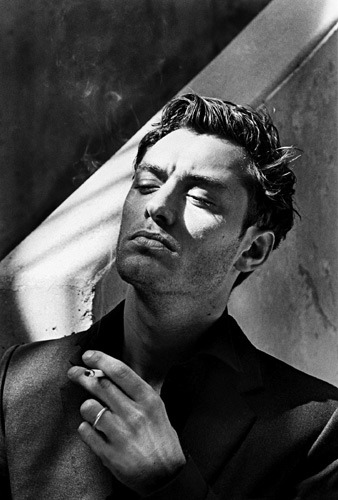 elemayer:  Jude Law by Helmut Newton