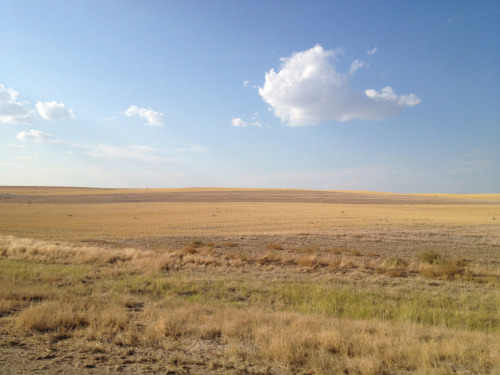 I expected the Rocky Mountains to be a little rockier than this. That John Denver's full of shit, man.