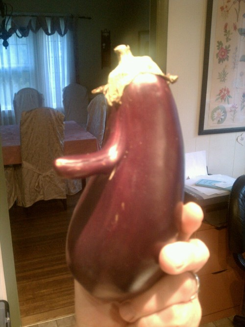 "I dub this eggplant, ""Bob Hope""."