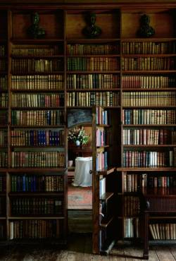 opulentfashion:  another freaking awesome library…a secret door!