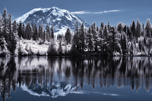 connorsurdi:  Infrared Mt. Rainier