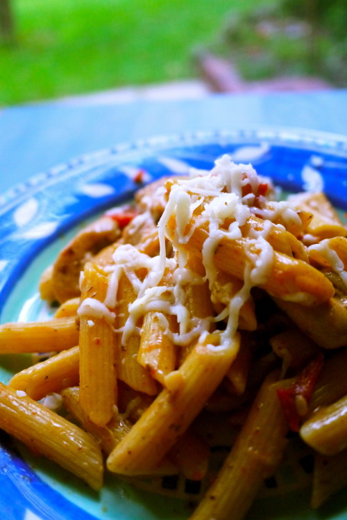 parmesan and sun-dried tomato chicken penne
