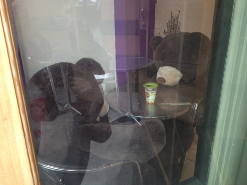 Two teddy bears sharing pearl milk tea in Tapioca Express on Shattuck!
