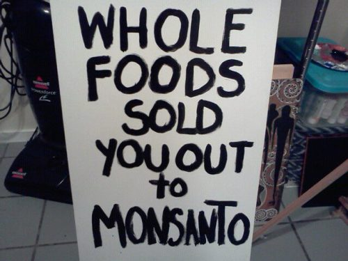 "mmmightymightypeople:thepeoplesrecord:mochente:    USDA FORCES WHOLE FOODS TO ACCEPT MONSANTO ""The policy set for GE alfalfa will most likely guide policies for other GE crops as well. True coexistence is a must.""   -  Whole Foods Market, Jan. 21, 2011 In the wake of a 12-year battle to keep Monsanto's Genetically Engineered (GE) crops from contaminating the nation's 25,000 organic farms and ranches, America's organic consumers and producers are facing betrayal. A self-appointed cabal of the Organic Elite, spearheaded by Whole Foods Market, Organic Valley, and Stonyfield Farm, has decided it's time to surrender to Monsanto. Top executives from these companies have publicly admitted that they no longer oppose the mass commercialization of GE crops, such as Monsanto's controversial Roundup Ready alfalfa, and are prepared to sit down and cut a deal for ""coexistence"" with Monsanto and USDA biotech cheerleader Tom Vilsack. In a cleverly worded, but profoundly misleading email sent to its customers last week, Whole Foods Market, while proclaiming their support for organics and ""seed purity,"" gave the green light to USDA bureaucrats to approve the ""conditional deregulation"" of Monsanto's genetically engineered, herbicide-resistant alfalfa.  Beyond the regulatory euphemism of ""conditional deregulation,"" this means that WFM and their colleagues are willing to go along with the massive planting of a chemical and energy-intensive GE perennial crop, alfalfa; guaranteed to spread its mutant genes and seeds across the nation; guaranteed to contaminate the alfalfa fed to organic animals; guaranteed to lead to massive poisoning of farm workers and destruction of the essential soil food web by the toxic herbicide, Roundup; and guaranteed to produce Roundup-resistant superweeds that will require even more deadly herbicides such as 2,4 D to be sprayed on millions of acres of alfalfa across the U.S. ""Compensation."" In exchange for a new assault on farmworkers and rural communities (a recent large-scale Swedish study found that spraying Roundup doubles farm workers' and rural residents' risk of getting cancer), WFM expects the pro-biotech USDA to begin to regulate rather than cheerlead for Monsanto. In payment for a new broad spectrum attack on the soil's crucial ability to provide nutrition for food crops and to sequester dangerous greenhouse gases (recent studies show that Roundup devastates essential soil microorganisms that provide plant nutrition and sequester climate-destabilizing greenhouse gases), WFM wants the Biotech Bully of St. Louis to agree to pay ""compensation"" (i.e. hush money) to farmers ""for any losses related to the contamination of his crop."" In its email of Jan. 21, 2011 WFM calls for ""public oversight by the USDA rather than reliance on the biotechnology industry,"" even though WFM knows full well that federal regulations on Genetically Modified Organisms (GMOs) do not require pre-market safety testing, nor labeling; and that even federal judges have repeatedly ruled that so-called government ""oversight"" of Frankencrops such as Monsanto's sugar beets and alfalfa is basically a farce. At the end of its email, WFM admits that its surrender to Monsanto is permanent: ""The policy set for GE alfalfa will most likely guide policies for other GE crops as well  True coexistence is a must."" Why Is Organic Inc. Surrendering? According to informed sources, the CEOs of WFM and Stonyfield are personal friends of former Iowa governor, now USDA Secretary, Tom Vilsack, and in fact made financial contributions to Vilsack's previous electoral campaigns. Vilsack was hailed as ""Governor of the Year"" in 2001 by the Biotechnology Industry Organization, and traveled in a Monsanto corporate jet on the campaign trail. Perhaps even more fundamental to Organic Inc.'s abject surrender is the fact that the organic elite has become more and more isolated from the concerns and passions of organic consumers and locavores. The Organic Inc. CEOs are tired of activist pressure, boycotts, and petitions. Several of them have told me this to my face. They apparently believe that the battle against GMOs has been lost, and that it's time to reach for the consolation prize.  The consolation prize they seek is a so-called ""coexistence"" between the biotech Behemoth and the organic community that will lull the public to sleep and greenwash the unpleasant fact that Monsanto's unlabeled and unregulated genetically engineered crops are now spreading their toxic genes on 1/3 of U.S. (and 1/10 of global) crop land. WFM and most of the largest organic companies have deliberately separated themselves from anti-GMO efforts and cut off all funding to campaigns working to label or ban GMOs. The so-called Non-GMO Project, funded by Whole Foods and giant wholesaler United Natural Foods (UNFI) is basically a greenwashing effort (although the 100% organic companies involved in this project seem to be operating in good faith) to show that certified organic foods are basically free from GMOs (we already know this since GMOs are banned in organic production), while failing to focus on so-called ""natural"" foods, which constitute most of WFM and UNFI's sales and are routinely contaminated with GMOs. From their ""business as usual"" perspective, successful lawsuits against GMOs filed by public interest groups such as the Center for Food Safety; or noisy attacks on Monsanto by groups like the Organic Consumers Association, create bad publicity, rattle their big customers such as Wal-Mart, Target, Kroger, Costco, Supervalu, Publix and Safeway; and remind consumers that organic crops and foods such as corn, soybeans, and canola are slowly but surely becoming contaminated by Monsanto's GMOs. Whole Foods' Dirty Little Secret: Most of the So-Called ""Natural"" Processed Foods and Animal Products They Sell Are Contaminated with GMOs The main reason, however, why Whole Foods is pleading for coexistence with Monsanto, Dow, Bayer, Syngenta, BASF and the rest of the biotech bullies, is that they desperately want the controversy surrounding genetically engineered foods and crops to go away. Why? Because they know, just as we do, that 2/3 of WFM's $9 billion annual sales is derived from so-called ""natural"" processed foods and animal products that are contaminated with GMOs. We and our allies have tested their so-called ""natural"" products (no doubt WFM's lab has too) containing non-organic corn and soy, and guess what: they're all contaminated with GMOs, in contrast to their certified organic products, which are basically free of GMOs, or else contain barely detectable trace amounts. Approximately 2/3 of the products sold by Whole Foods Market and their main distributor, United Natural Foods (UNFI) are not certified organic, but rather are conventional (chemical-intensive and GMO-tainted) foods and products disguised as ""natural."" Unprecedented wholesale and retail control of the organic marketplace by UNFI and Whole Foods, employing a business model of selling twice as much so-called ""natural"" food as certified organic food, coupled with the takeover of many organic companies by multinational food corporations such as Dean Foods, threatens the growth of the organic movement.  Damn, Monsanto. You ruin everything.   saying it again: this really exposes how ineffectual ""not eating meat"" is at addressing structural injustice in our food chain. same thing for ""buying the right things"" to address injustice. i'm waiting to hear a more meaningful deep conversation about our food, one that in particular doesn't focus the ""solution"" to injustice on better consumer choices— i'll just sit down right here. and continue waiting…."