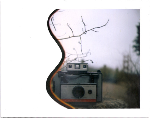 polaroidsf:  A Land Camera in the wild.