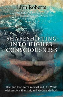 Bloor-Danforth Line- Shapeshifting Into higher Consciousness, by Llyn Roberts amazon chapters
