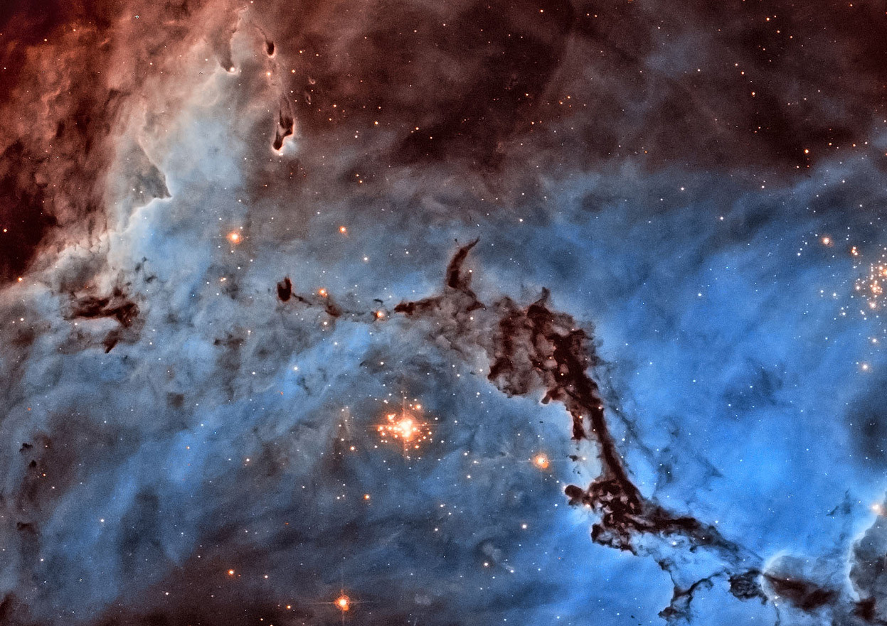 From Hubble's Hidden Treasures, one of 16 photos. First prize winner, image processing category. Josh Lake (USA) submitted a stunning image of NGC 1763, part of the N11 star-forming region in the Large Magellanic Cloud. ESA/Hubble had previously published an image of an area just adjacent to this, based on observations by the same team. Josh took a different approach, producing a bold two-colour image which contrasts the light from glowing hydrogen and nitrogen. The image is not in natural colours — hydrogen and nitrogen produce almost indistinguishable shades of red light that our eyes would struggle to tell apart — but Josh's processing separates them out into blue and red, dramatically highlighting the structure of the region. As well as narrowly topping the jury's vote, Josh Lake also won the public vote. (NASA/ESA/Josh Lake)