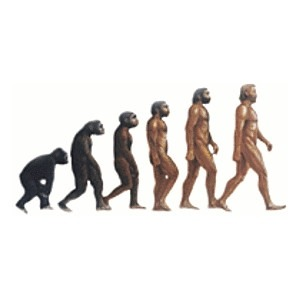 Brain Wiring, Not Size, Helped Humans Evolve Beyond ChimpsHuman and chimp brains look anatomically similar because both evolved from the same ancestor millions of years ago. But where does the chimp brain end and the human brain begin?A new UCLA study pinpoints uniquely human patterns of gene activity in the brain that could shed light on how we evolved differently than our closest relative. The identification of these genes could improve understanding of human brain diseases like autism and schizophrenia, as well as learning disorders and addictions.Read more: http://www.laboratoryequipment.com/news/2012/08/brain-wiring-not-size-helped-humans-evolve-beyond-chimps