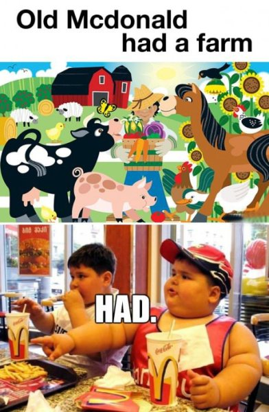 Old McDonald Had A Farm…..HAD.