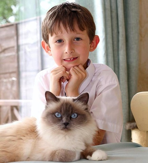 "Jessi-Cat helped this seven-year-old boy with selective mutism to say ""I love you""  for the first time."