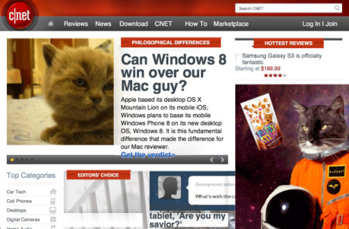 Meowbify: Because the Internet needs more cats  Address the shortage of cats on the Internet by turning any Web site into an animated feline fest with Meowbify.  Yes please