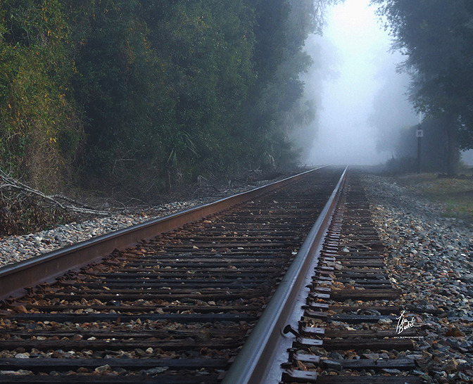 Train Tracks On A Foggy Morning - made from an additive-free cotton-poly blend and features a special ink-receptive coating that protects the printed surface from cracking when stretched - click photo to view webpage