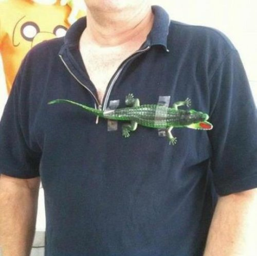 DIY Lacoste Shirt Note: do not use live alligator.