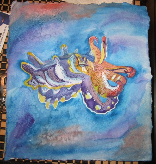 Watercolor Cuttlefish by Vanishing Fin