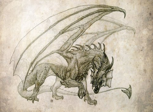 Dragon by ~ansent —-x—- More: | Dragons | Random |