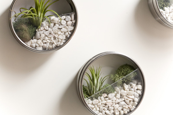 diyheartsandcrafts:  DIY Terrarium Magnets From…  To…