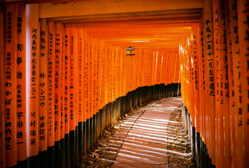 kyoto-14 (by Play__Dead)
