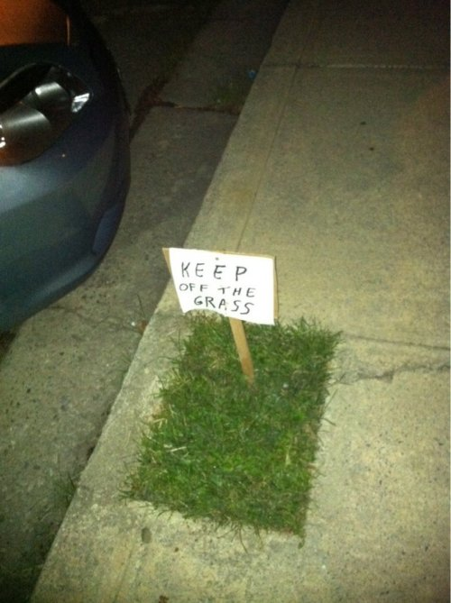 Keep Off the Tiny Patch of Grass I can't count the number of times I've had to re-seed this plot because people keep playing football games on it.