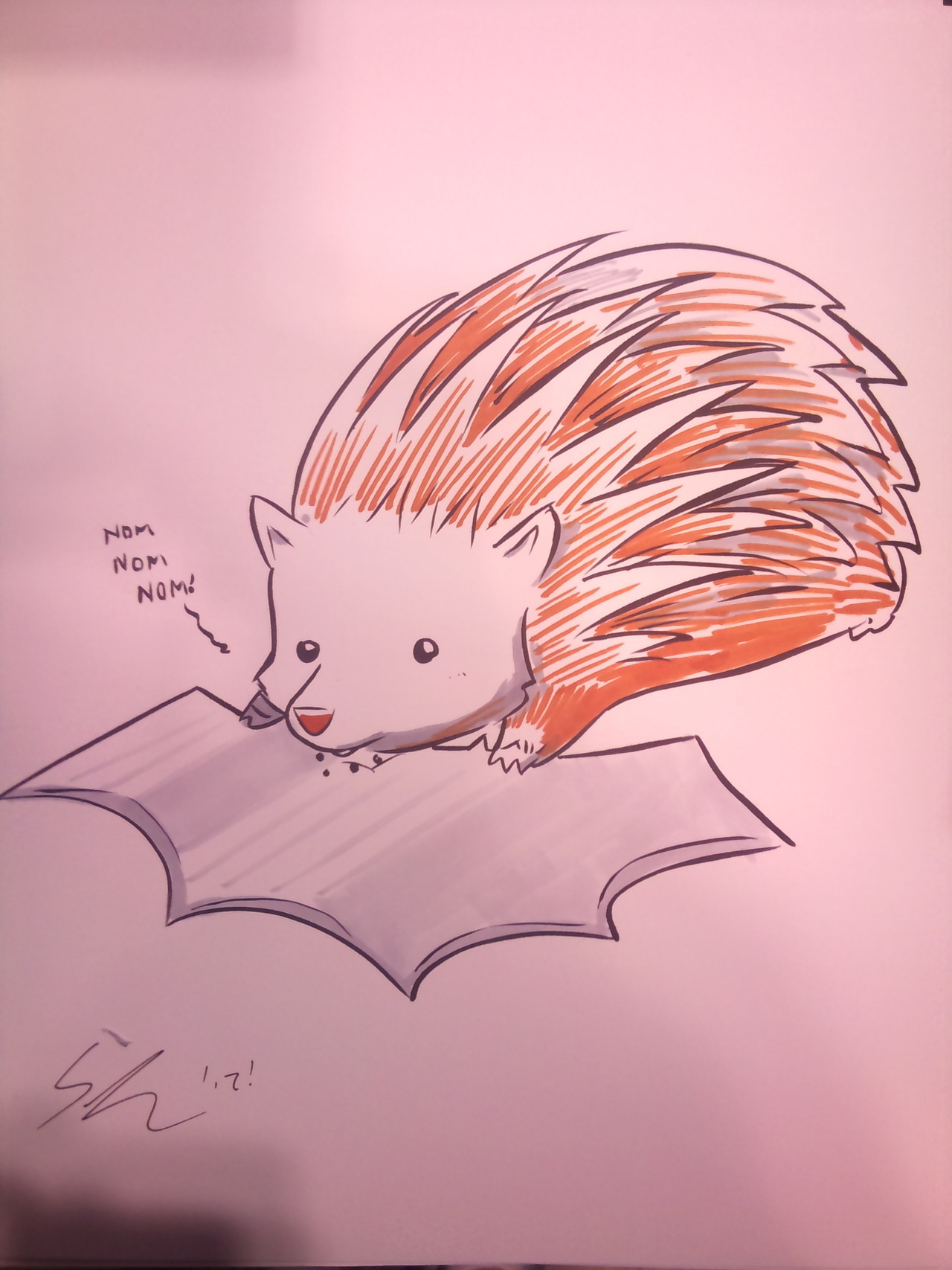 Hedgehogs love batarangs I guess?