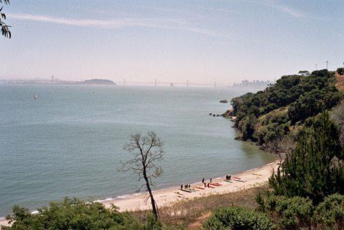 Angel Island, sometime in June.