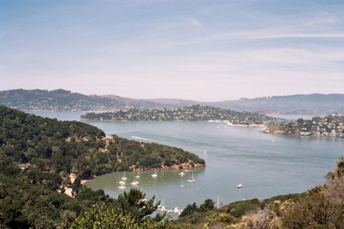 Ayala Cove, Angel Island. Sometime in June.