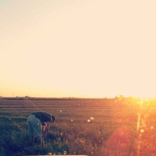 Peeing on the crops. M's new favourite thing. (Taken with Instagram)