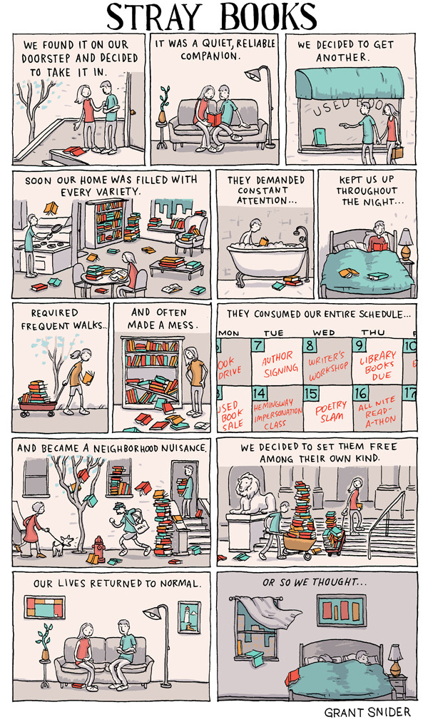 unchartedbooks:  INCIDENTAL COMICS: Stray Books