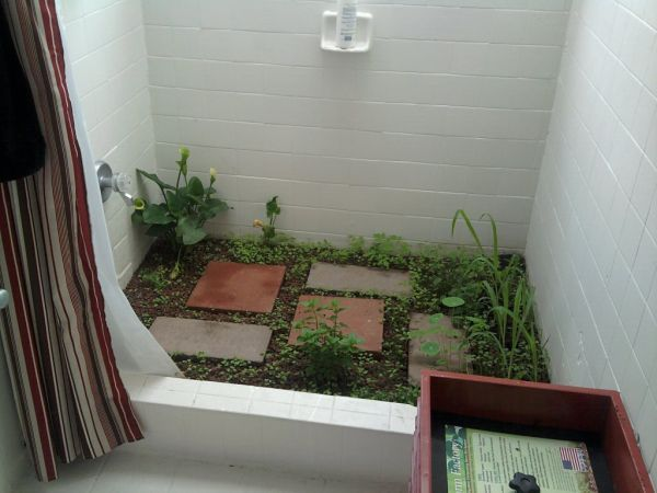 "legentis:  craigslist houseshare ad: ""i have a garden growing in my shower so you have to use eco-friendly hair products. you will see worms and other insects, and you will occasionally see a spider too but they all help out the ecosystem."" ok.  I'm all for using graywater to water plants. (Green) thumbs up for this!  Maybe pair it with this moss bathmat?!"