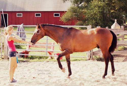haleybreen:  haleybreen:  foots! photo by qwertzponies summer '12  ponypony!