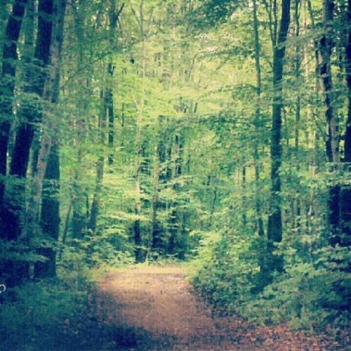 #path #photoadayaug (Taken with Instagram at Vermont)