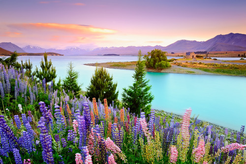 """Tranquil lake"" by AtomicZen  Lake Tekapo, New Zealand."