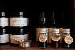 Wishbone Medicinals- made in Portland-available in our apothecary S + F stocks a worn-wood shelf's full of healing herbal products. Each product aids a holistic approach to well-being and are wildcrafted through the knowledge and positivity of herbal artisan Claudia Coleman and co. My most recent obsession? Wishbone medicinals' lavender sage oil. Both lavender and sage offer topical healing properties. In the past week I have applied the oil to bug bites, sun-dry elbows and a river rock scrape. Lavender is also one of the most powerful aromatherapy tools available. A little lavender sage oil applied to the temples remedies tension headaches. I could elaborate on lavender's healing properties but, perhaps, it is best discovered first-hand. Wishbone Medicinals also offers tinctures and salves. Befriend your digestive system with a burdock and dandelion root tincture. This soothes your digestive lining and provides a boost of potassium and iron. Healing chamomile, calendula and rose blends are available in concentrated salves… Basically, there are so many ways to take care of yourself. Wishbone gets it. Come explore the entire line on our medicine shelf.-Elissa Hall image by Anja Verdugo
