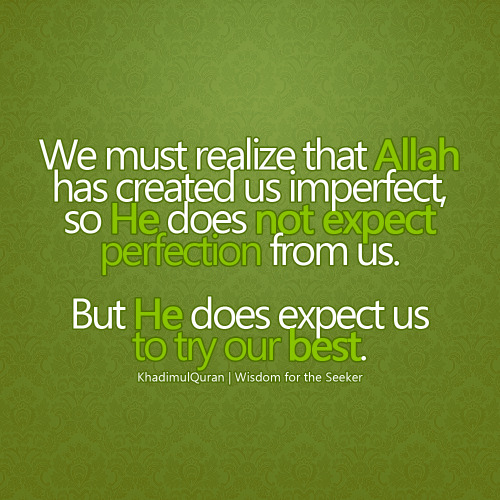 islamic-quotes:  Imperfect     Yes. Try to be our very best!