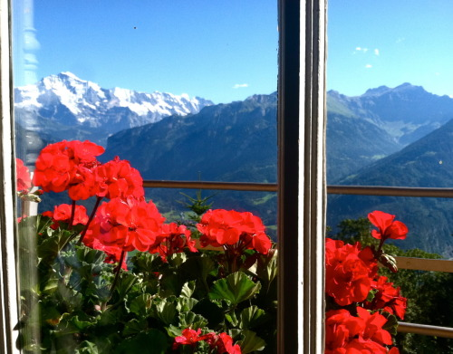 view from the harder kulm funicular station, interlaken.