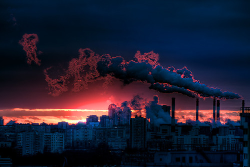 gaksdesigns:  'Evening' Photograph by Andrew Zuznetsov