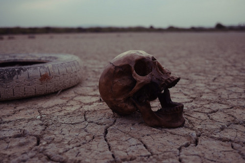 dead life is waiting for you by yougo jeberg on Flickr.