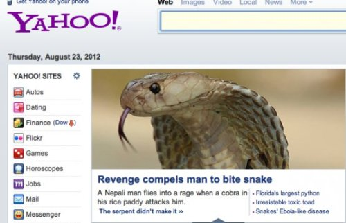 collegehumor:  Angry Man Bites Cobra to Death, Avenging His Rice A Cobra ruins man's rice field so the Nepali man attacks cobra, biting it to death.