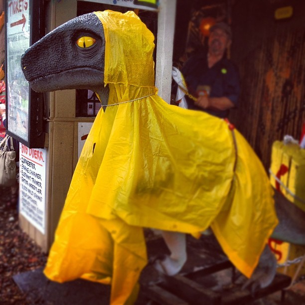 finding-joy:  Velociponcho (Taken with Instagram)  Clever girl…